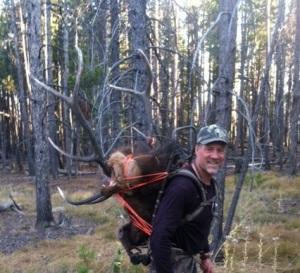 Elk Photo 2